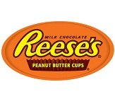 Amazon.com : REESE'S White Peanut Butter Cups Miniatures ...