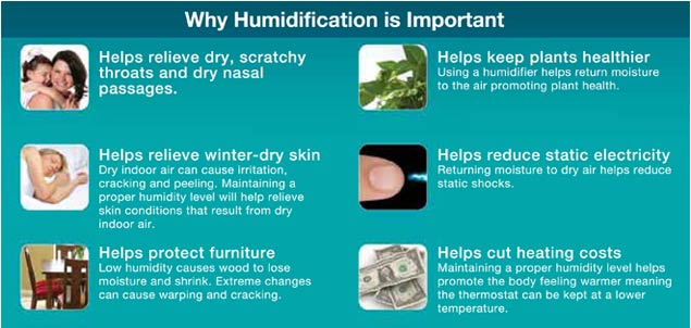 Why humidification is important | KPKids.net