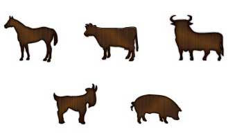 This product works for all livestock