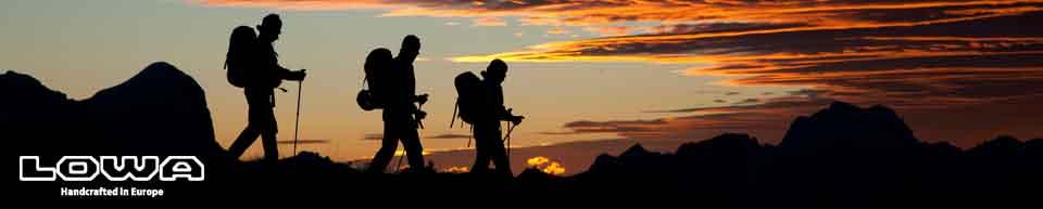 Amazon.com | Lowa Men's Camino GTX Hiking Boot | Hiking Boots