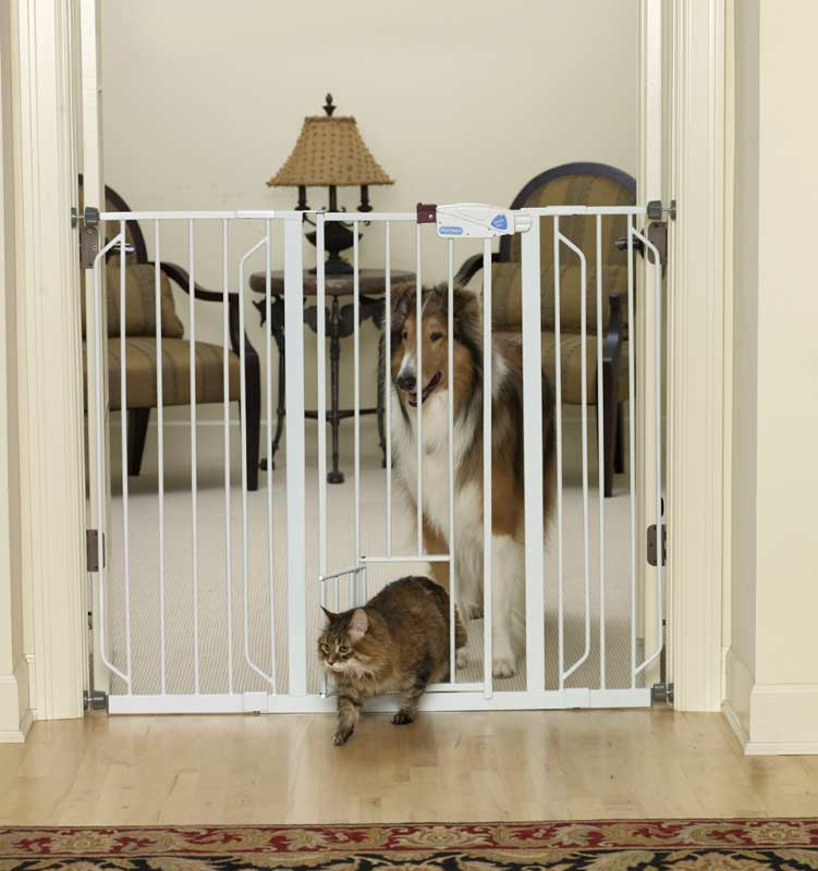 Amazon Com Carlson Extra Tall Pet Gate With Small Pet
