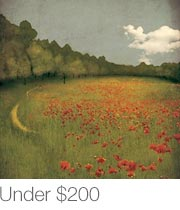 Featured Artwork Under $200