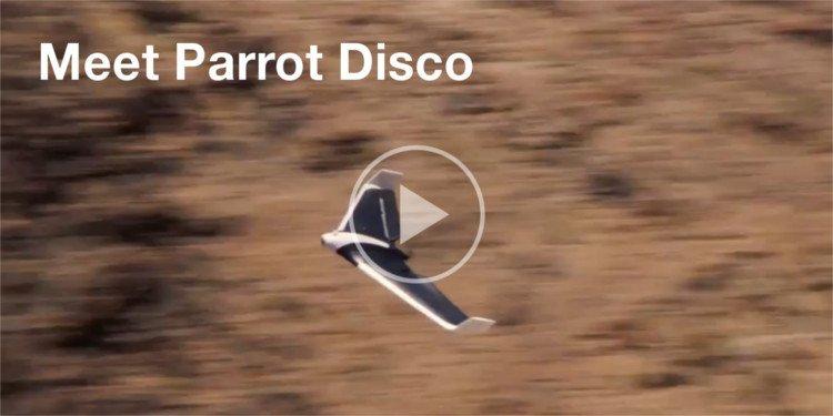 Meet Parrot Disco