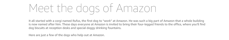 About Amazon - Working at Amazon - Dogs of Amazon