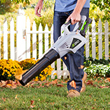 Try the Leaf Blower Buying Guide