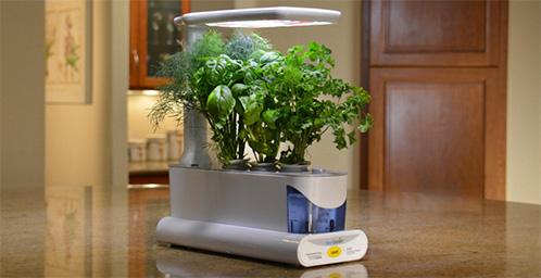 Indoor Gardening Hydroponics