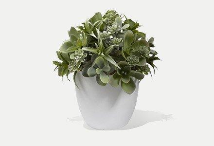 Artificial-Plants