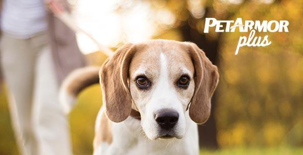 Shop PetArmor Plus