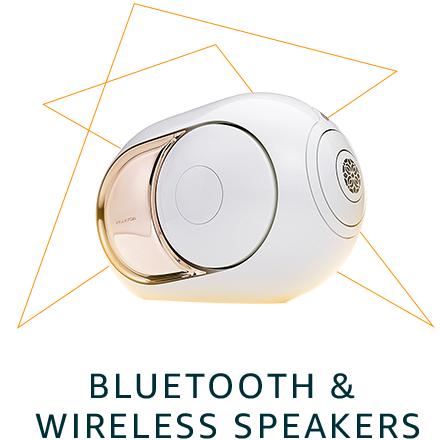 Bluetooth & Wireless Speakers