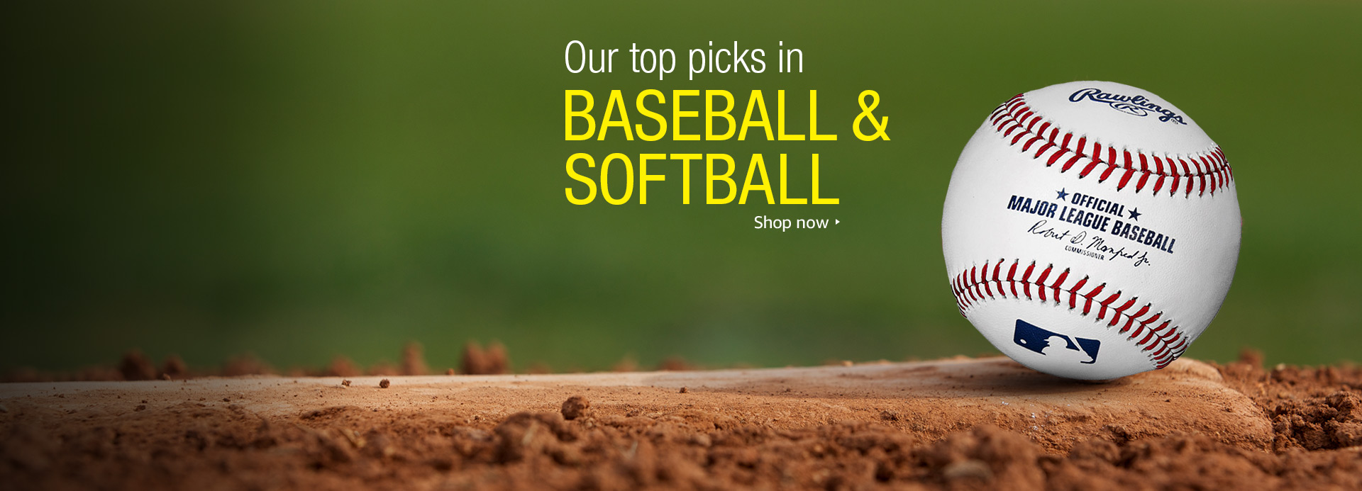 Baseball | Amazon.com: Bats, Mitts & Baseballs