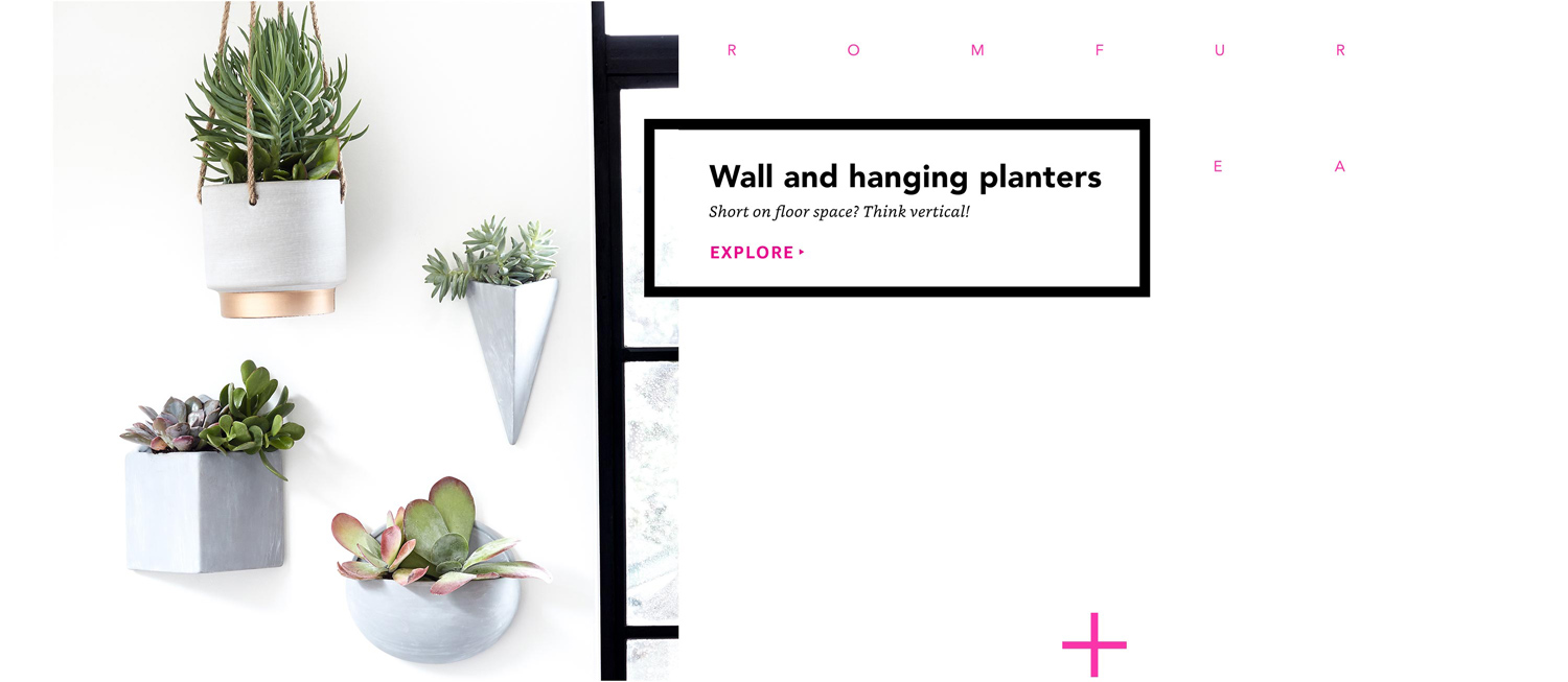 Wall and hanging planters