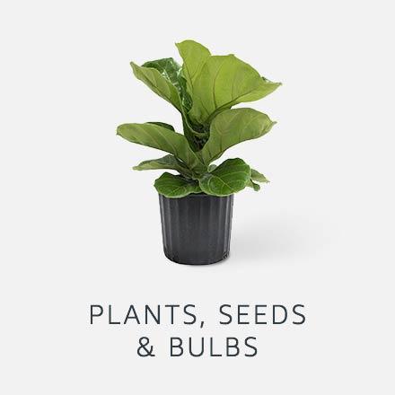 Plants seeds & bulbs