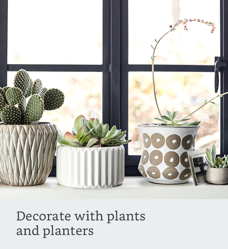 Decorate with plants and planters