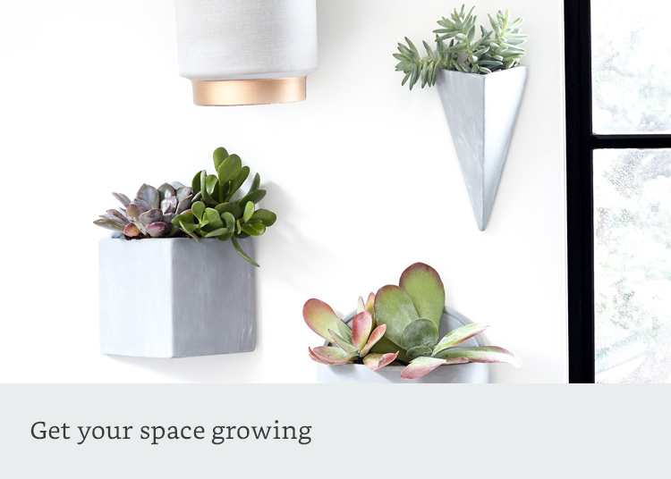 Get your space growing