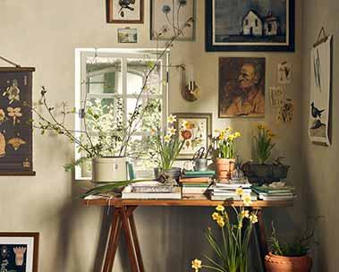 Now trending: cottagecore style. Explore décor.