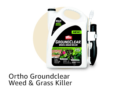 Ortho Groundclear Weed & Grass Killer