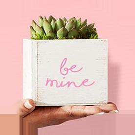 Valentines Day Amazoncom Gift Finder
