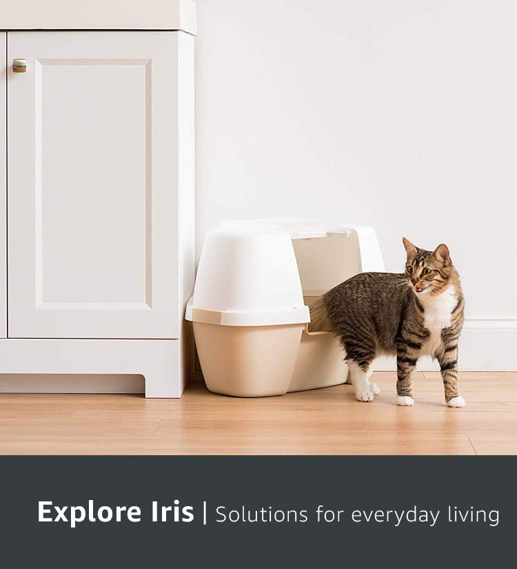 Explore Iris