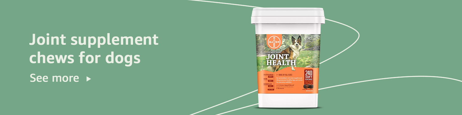 Joint supplement chews for dogs