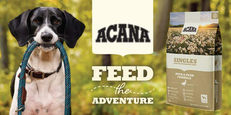 Acana Feed the adventure