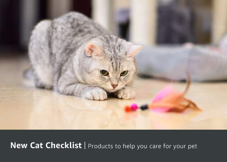 New Cat Checklist