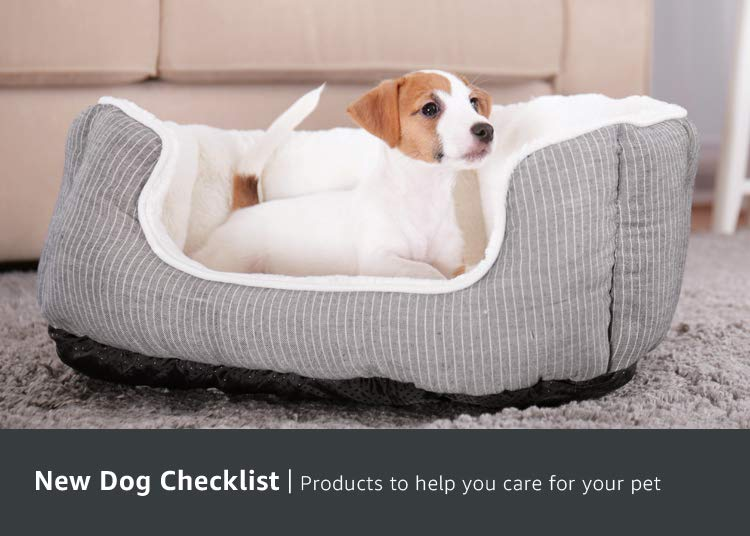 New Dog Checklist