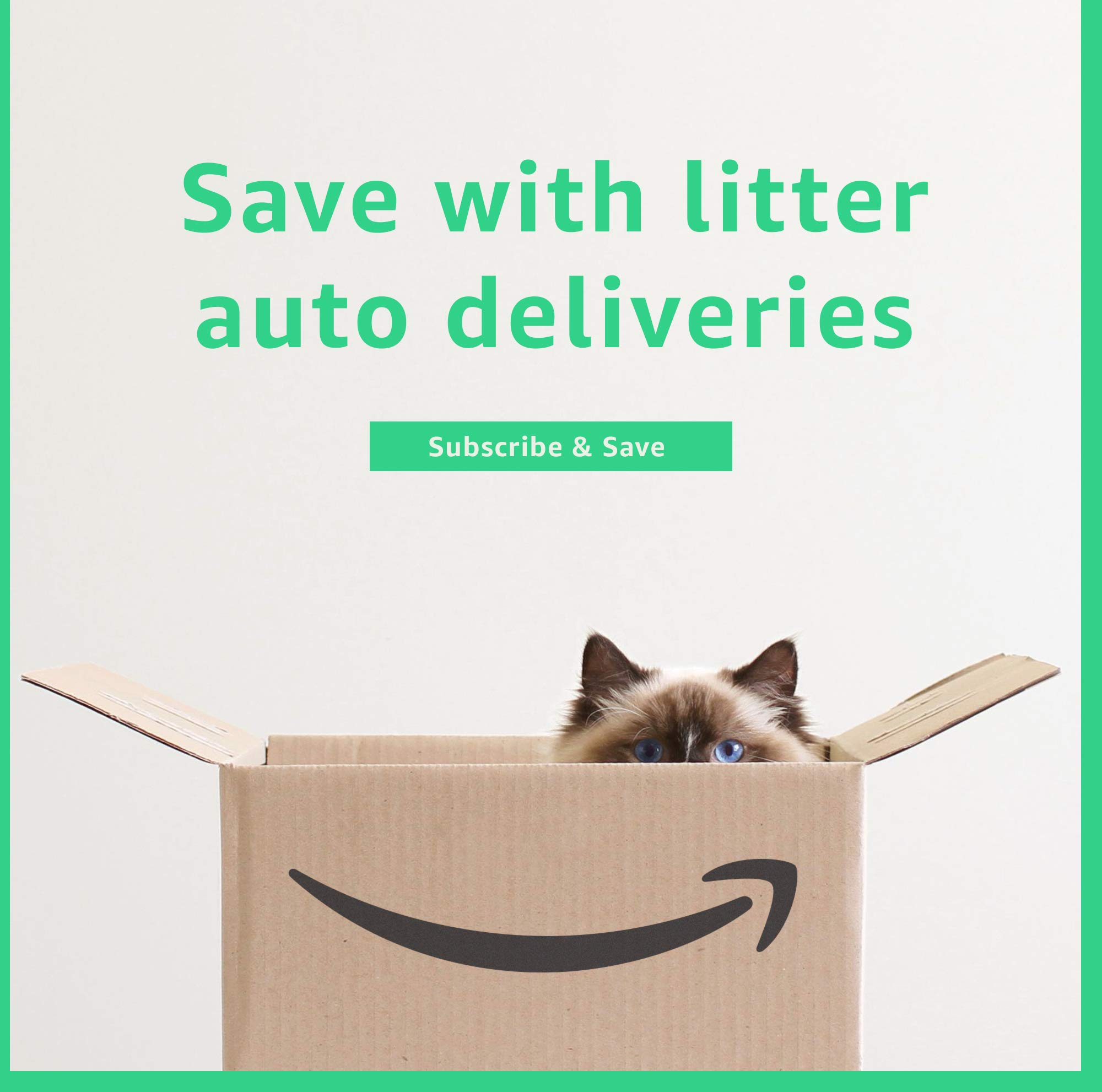 Save with litter auto deliveries