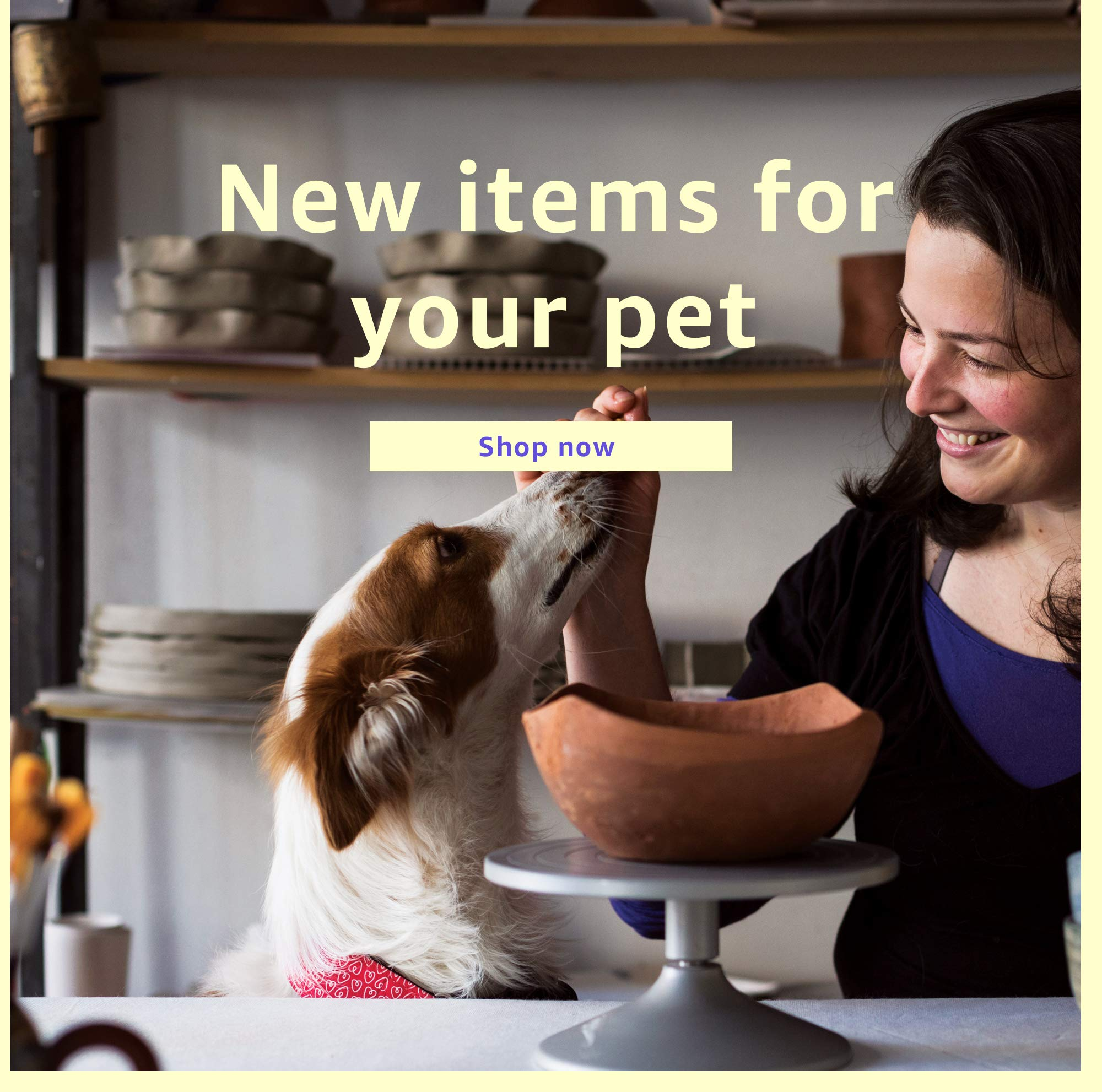 New items for your pet