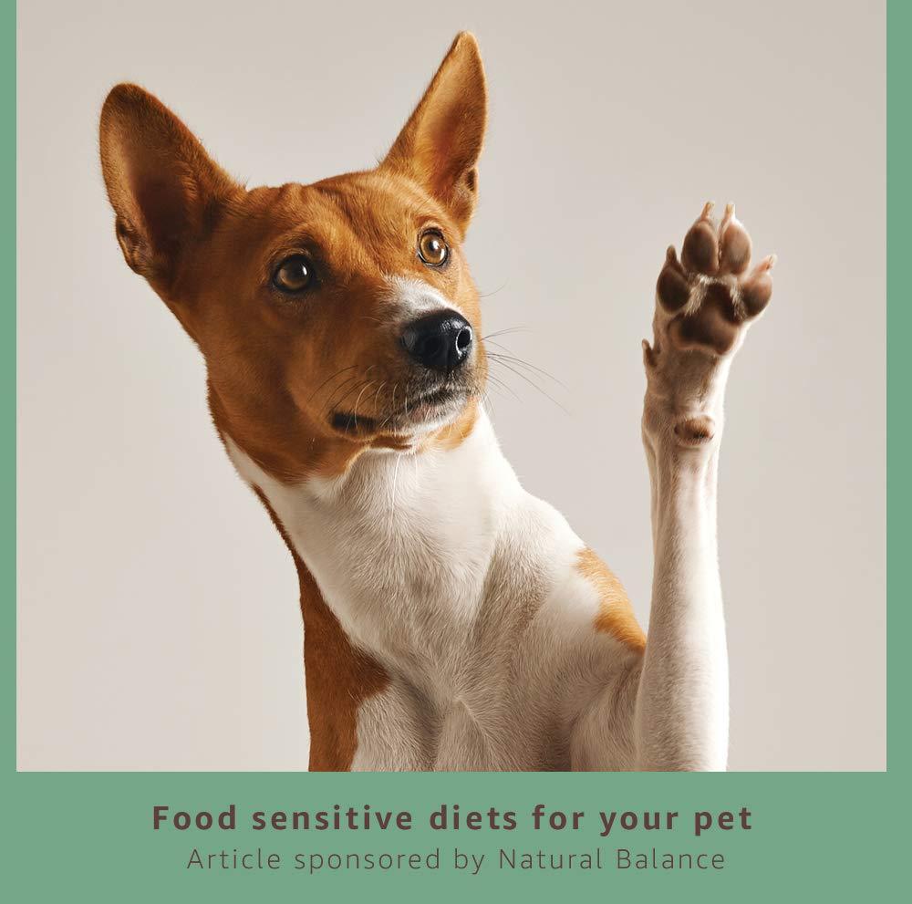 Food sensitive diets for pets