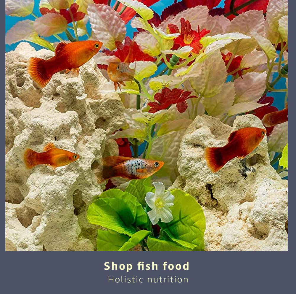Shop Fish Food