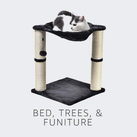 Bed, Trees, & Furniture
