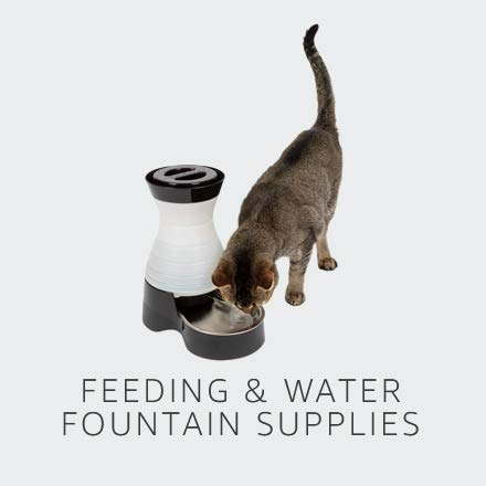 Feeding & Water Fountain Supplies