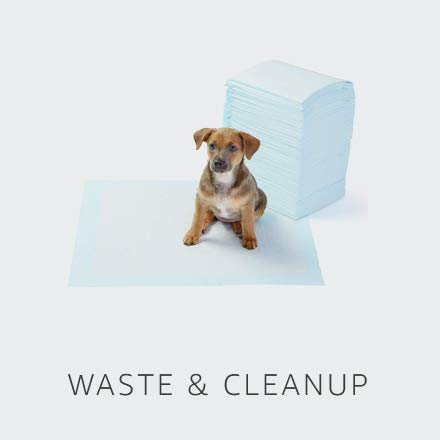 Waste & Cleanup