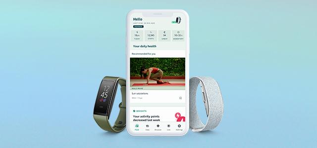 Halo Health & Wellness bands