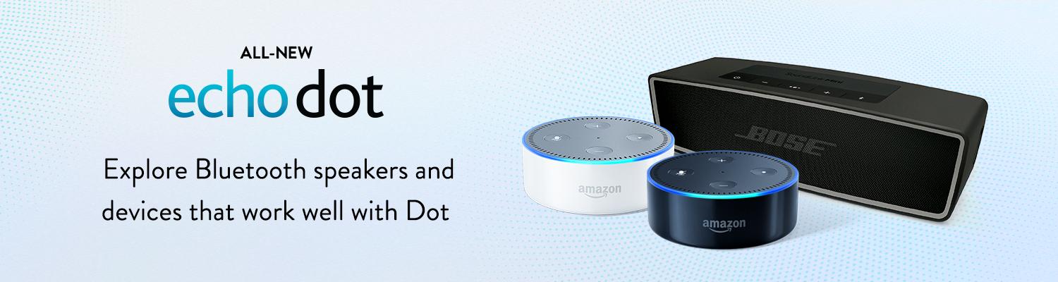 how to use request maker echo dot