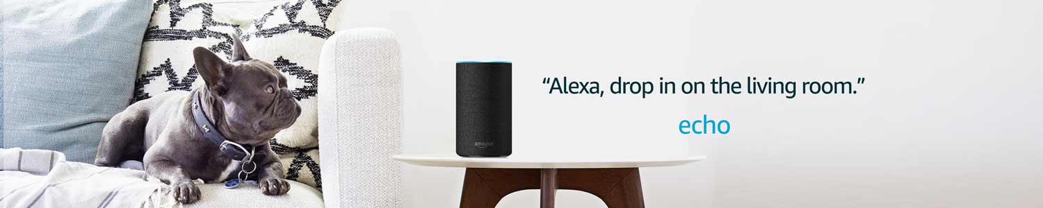 Alexa, drop in on the living room. | Echo