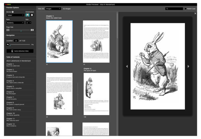 Kindle Previewer Screens