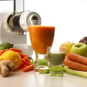 Fruit Juice Extractor