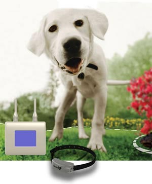 customshape havahart wireless dog fence
