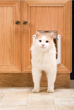 Your cat can come and go from the room where her litter box is housed u2013 even when the door is closed. A sliding lock gives you the option to bar access ... & Amazon.com : PetSafe Cat Flap Small White : Cat Door : Pet Supplies