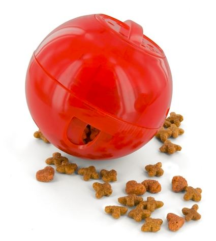 Amazon.com : PetSafe SlimCat Meal Dispensing Cat Toy, Blue