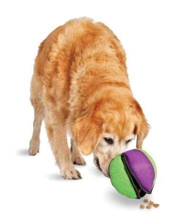 Lotus Ball Dog Toy Medium