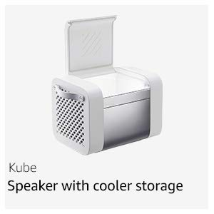Bluetooth speaker with cooler storage