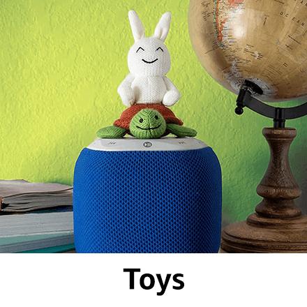 Amazon Launchpad Toys