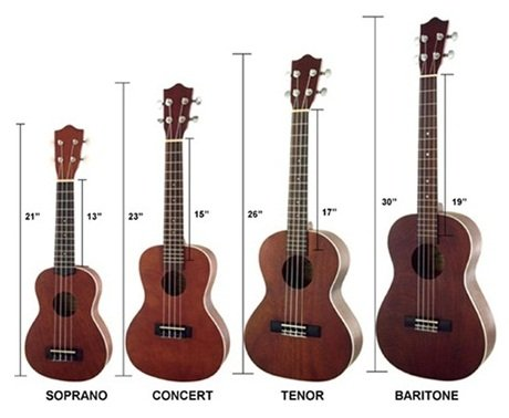 Amazon.com: Lanikai CK-TEK Ukulele: Musical Instruments