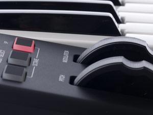 Alesis Q49 Detail Image