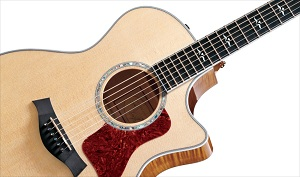taylor guitars 614ce grand auditorium acoustic electric guitar musical instruments. Black Bedroom Furniture Sets. Home Design Ideas