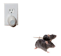 Victor Mini PestChaser Ultrasonic Rodent Repellent In-use Shot