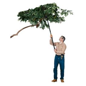 Hi Reach pruning Stic