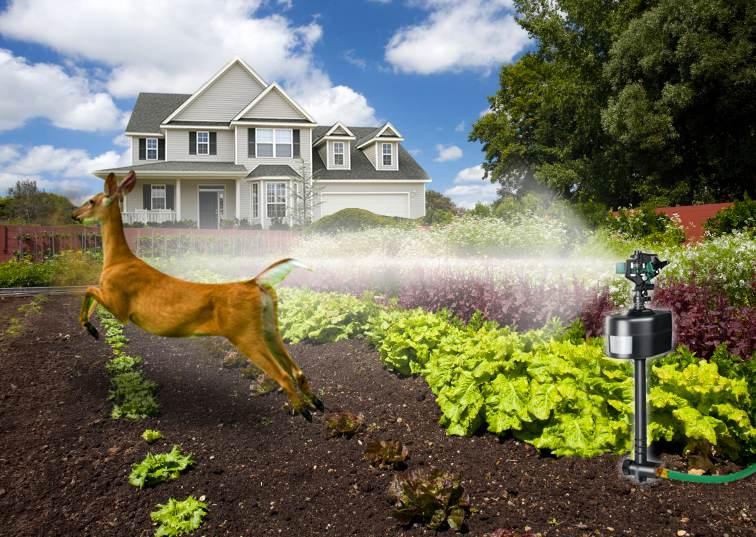 Havahart 5265 Spray Away Motion Detector Sprinkler Animal Repellent Rodent